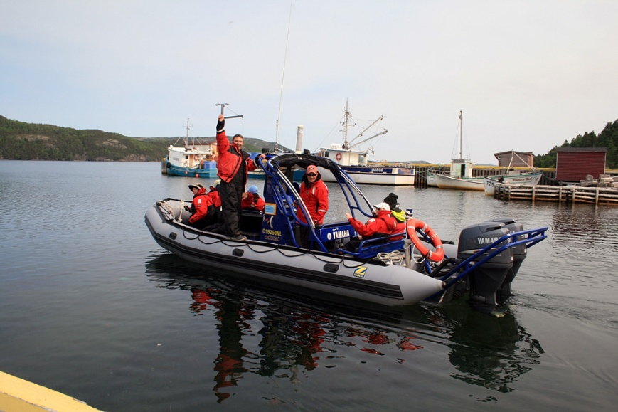 One of the hands-down highlights for everyone was a zodiac adventure in Bonavista Bay on a beautiful, calm day.