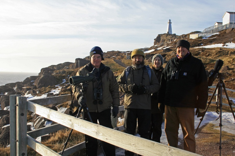 Four enthusiastic birders from across the United States visited St. John's last week as part of the WINGS winter tour. Here they can be seen at Cape Spear, smiling after scoring great looks at two prime targets - Purple Sandpipers and Dovekie!!