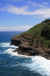 A view from Kilauea Point. Hundreds of Red-footed Boobies use this particular slope to hang out and raise their young.