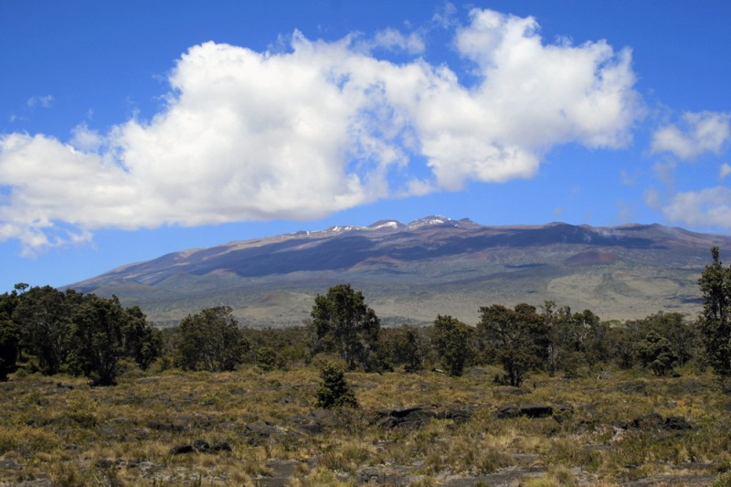 A view of Mauna Kea, taken from the Puu Oo trail. This is a fabulour hike through some very interesting landscapes, not to mention some very hot birding!