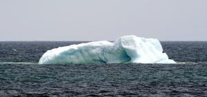 Iceberg_BearCove_8298