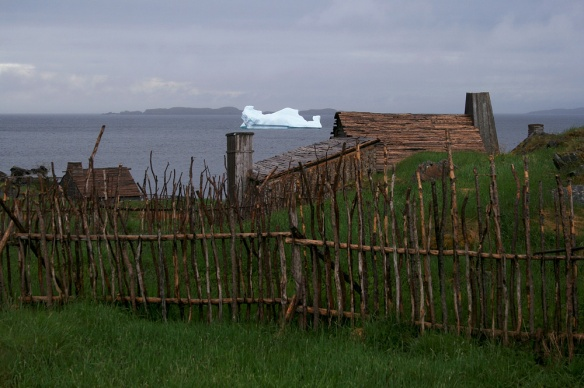 "Our tour of ""Cape Random"" (near New Bonaventure) was fun, and included yet another iceberg right in the cove."