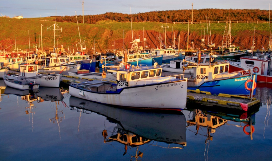 I enjoyed some stunning evening light and scenery at the beautiful boat harbour in St. Bride's ...