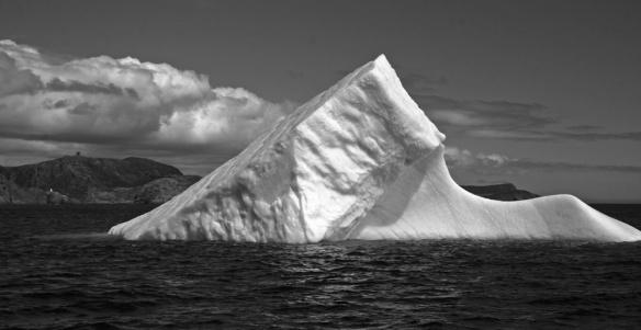 Iceberg_StJohns_3886bw
