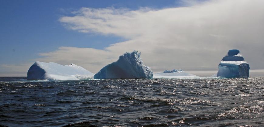 Icebergs_StJohns_3826