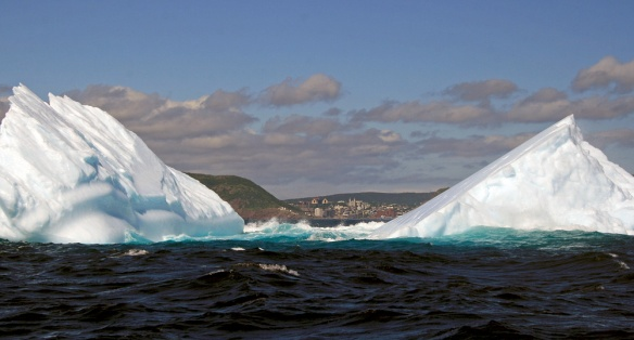 Not surprisingly, the highlight was getting up close and personal with more icebergs. Here we could see St. John's in the distance between two bergs.
