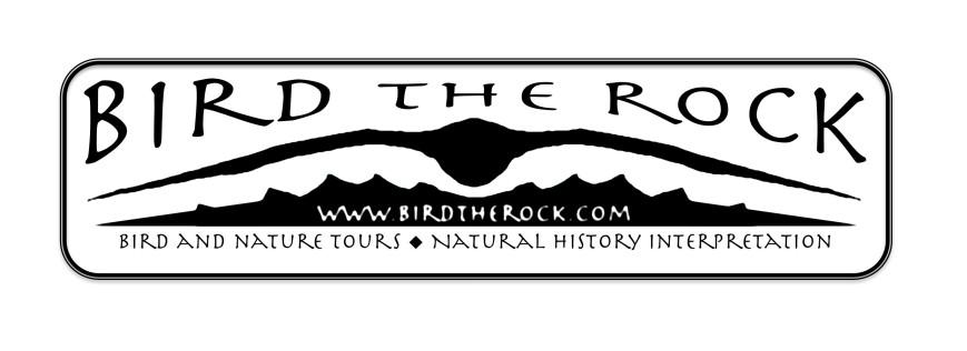 birdtherock2_smoothed