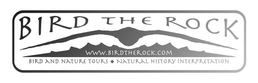 birdtherock_metal