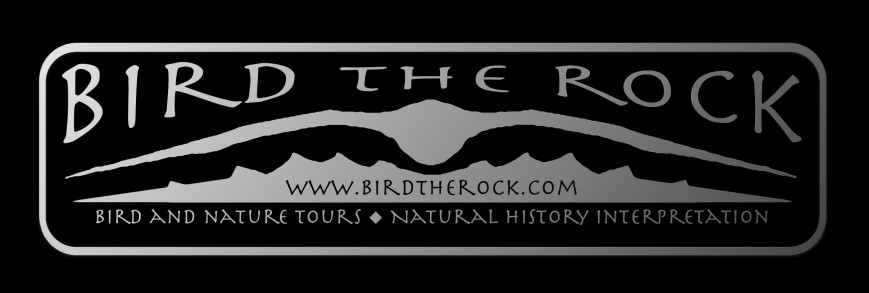 birdtherock_metal_blk