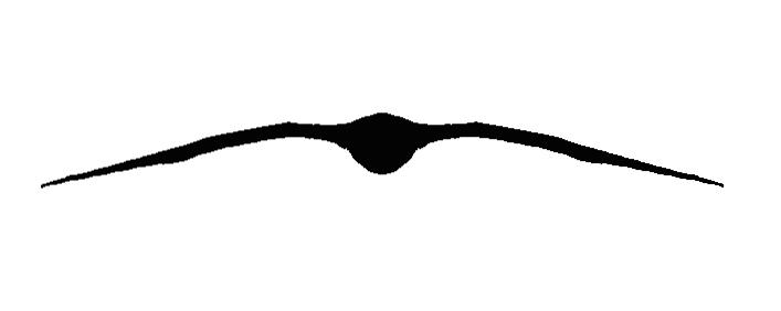 GRSH_silhouette