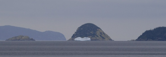 Icebergs in August are pretty unusual, but this has been an exceptional year. This one in Bonavista Bay was the last one I'll see this year.