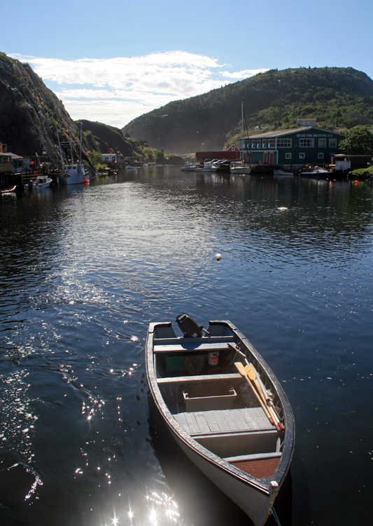 Quaint and historic, this little fishing harbour in St. John's is also home to an award-winning microbrewery - Quidi Vidi Brewing Co (right).