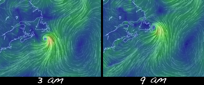 Two significant, and disappointing, factors made Hurricane a bust when it came to birds. First, they eye of the hurricane passed by just east of Cape Race instead of making landfall. Any subtropical seabirds in its midst may have carried on NE with the storm rather than falling out along our coast. Secondly, while the winds looked good initially (see the 3am windmap above), they quickly turned to the northwest as the eye passed Cape Race (see 9am windmap), resulting in offshore winds that would have kept seabirds offshore and out of our sight.