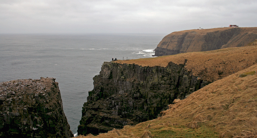 It is surreal to see Bird Rock (left) completely devoid of birds this time of year, when it is bustling with thousands of gannets during spring and summer. Here, John & Ed enjoy a mid-morning seawatch while I hiked over the eastern ridge.