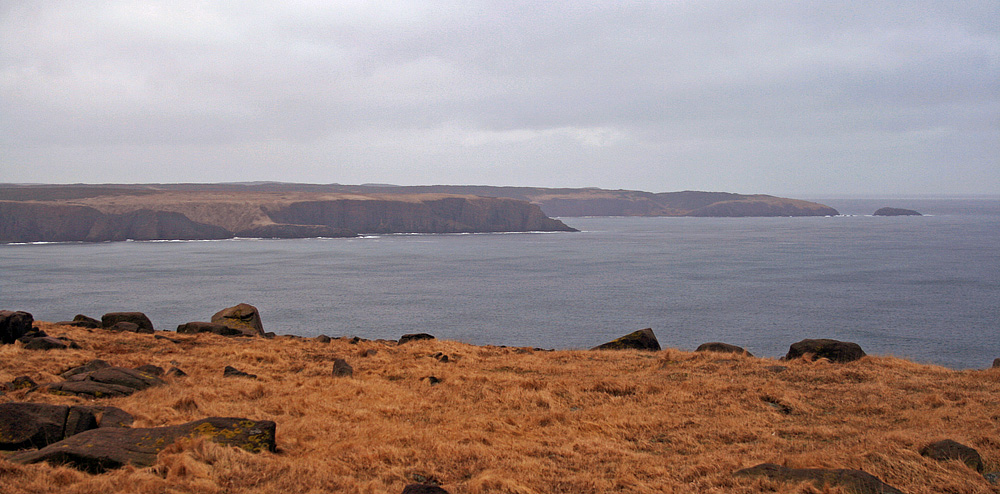 A view over Golden Bay, which lies just east of Cape St. Mary's. It is an important wintering area for the threatened Harlequin Duck.