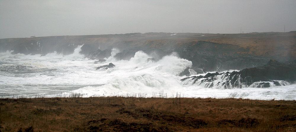 Waves_Jan25_4048