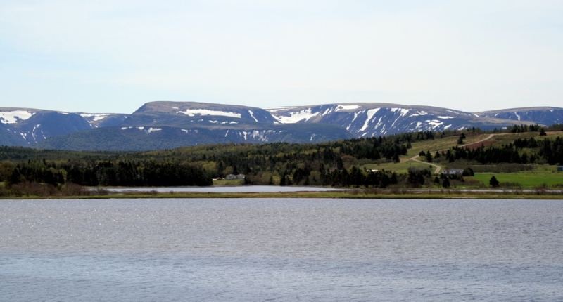 There is stunning scenery at every turn in the Codroy Valley. This beautiful vista across the estuary and marsh, with rolling fields and the snow-capped Long Range Mountains in the background, was right from our cabin window!
