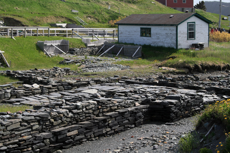 The archaeological dig at the Colony of Avalon (Ferryland) showcases one of North America's earliest European settlements.