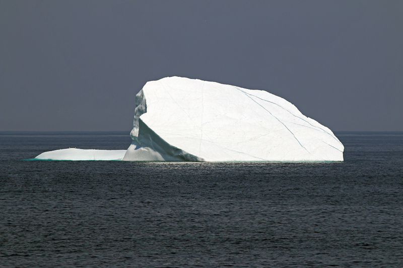 There were a smaller number of icebergs around the Avalon compared to last year, but still a few beauties to be enjoyed.