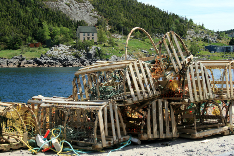 Lots of wonderful scenery and culture to be found on our tours ... these lobster pots were sitting on a wharf in beautiful King's Cove, Bonavista Bay.