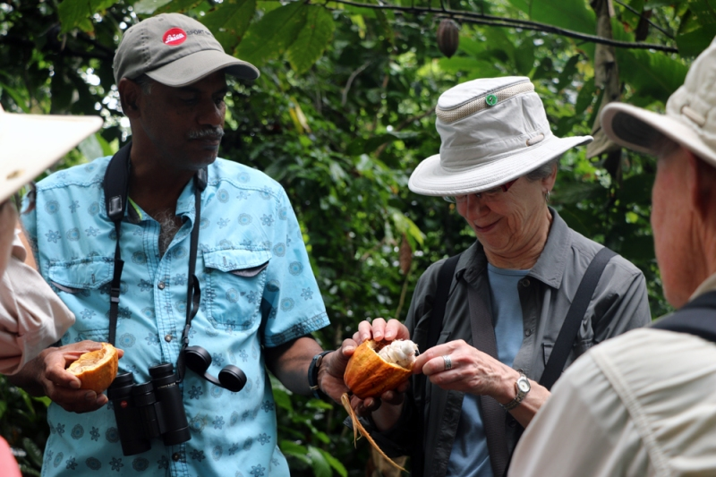 In addition to great bring, we also took opportunities to learn about the local culture and economy. Trinidad is well known for its cocoa, and here our group is learning first-hand how it is traditionally harvested and processed.