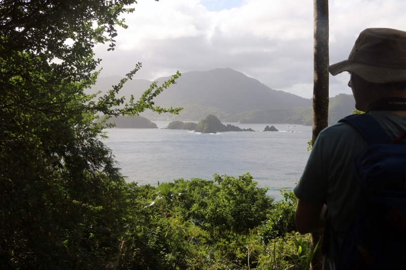 Co-leader Jody Allair looks back at the village of Speyside and our lodgings from an overlook on Little Tobago.