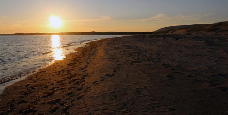 MillvilleBeach_sunset_2207