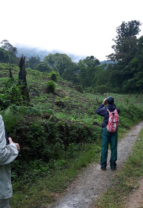 Birding2_Honduras
