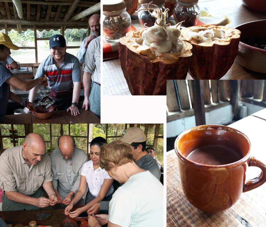 CocoaComp_EcoFinca_Honduras