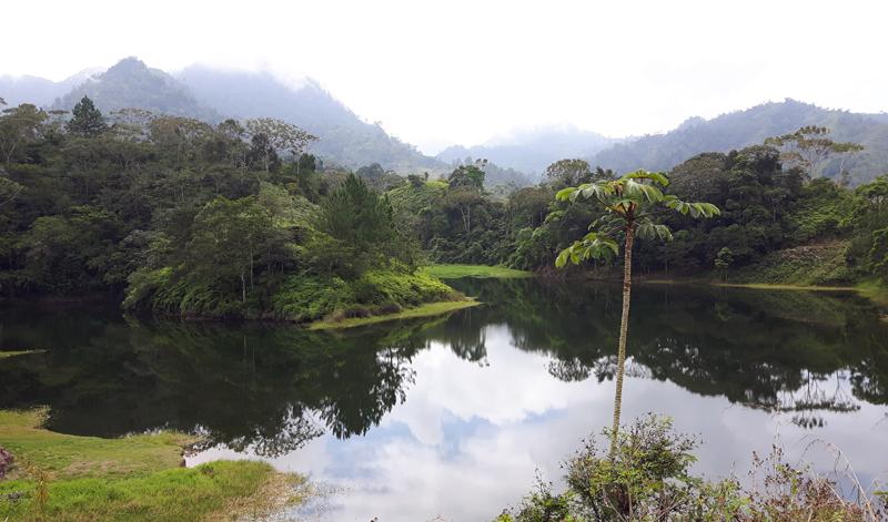 Scenery_PANACAM_Honduras
