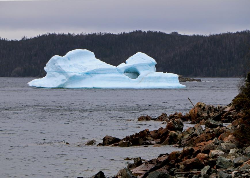 Iceberg_May232019_6524