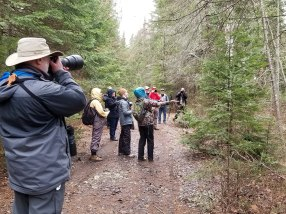 Birding with Eagle-Eye Tours in 2019
